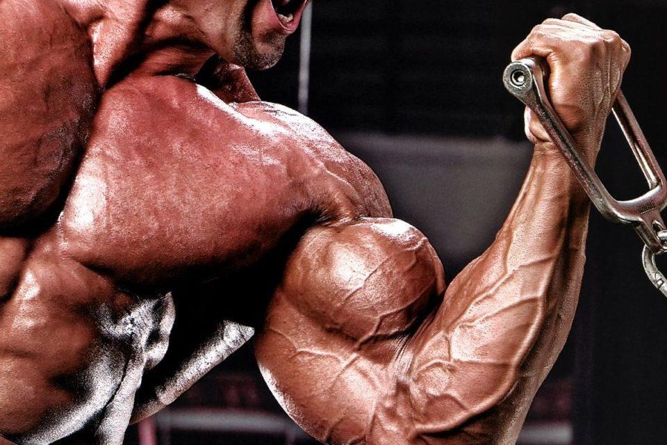 Super serie de biceps